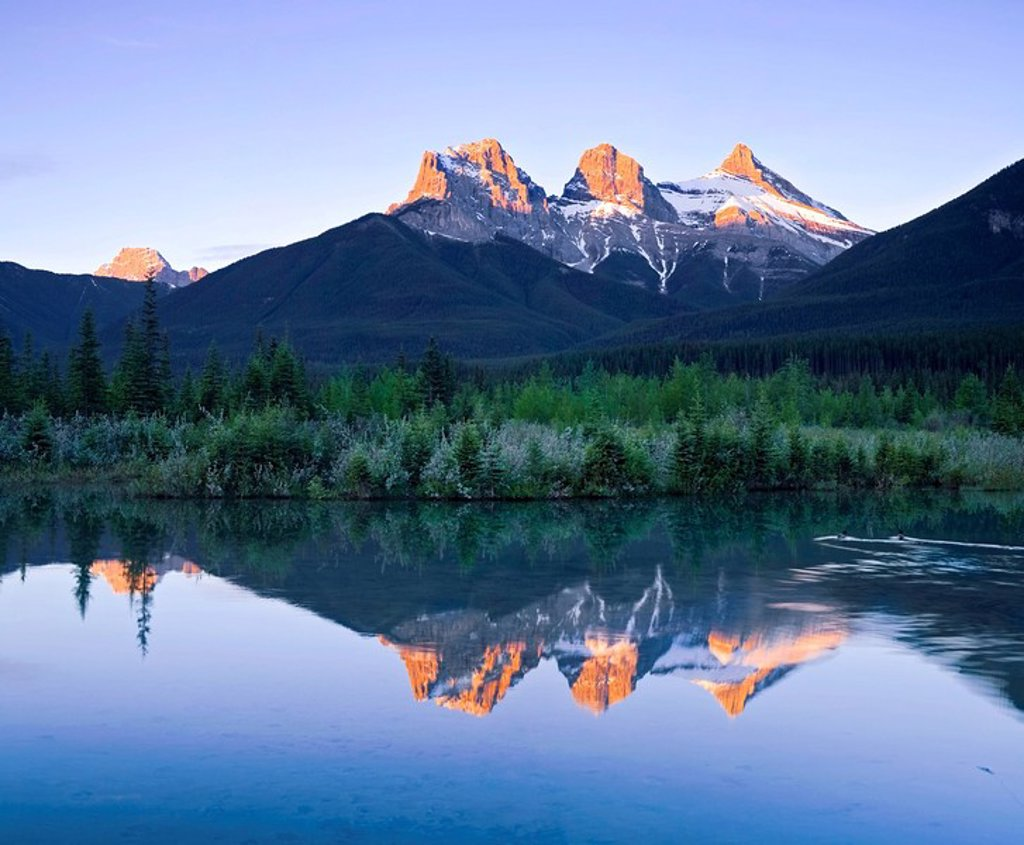 Stock Photo: 1990-14996 Three Sisters Mountain reflection in water, Canmore, Alberta, Canada