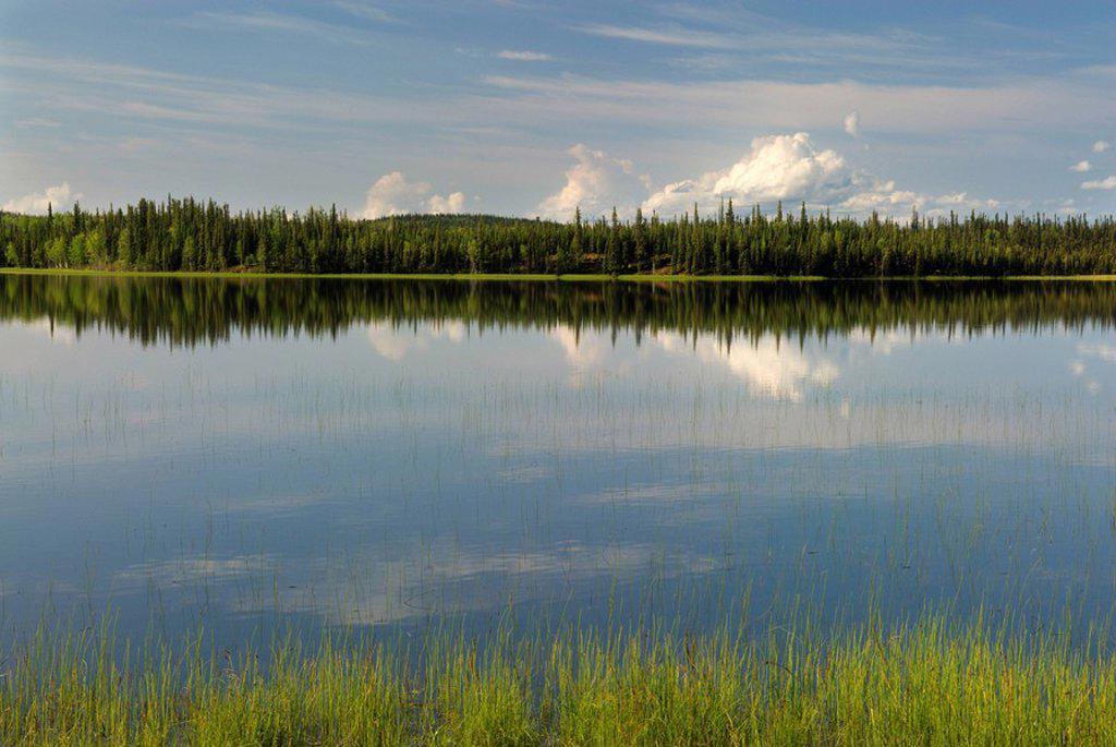 Stock Photo: 1990-16264 Deadman Lake, Tetlin National Wildlife Refuge, Alaska, United States of America