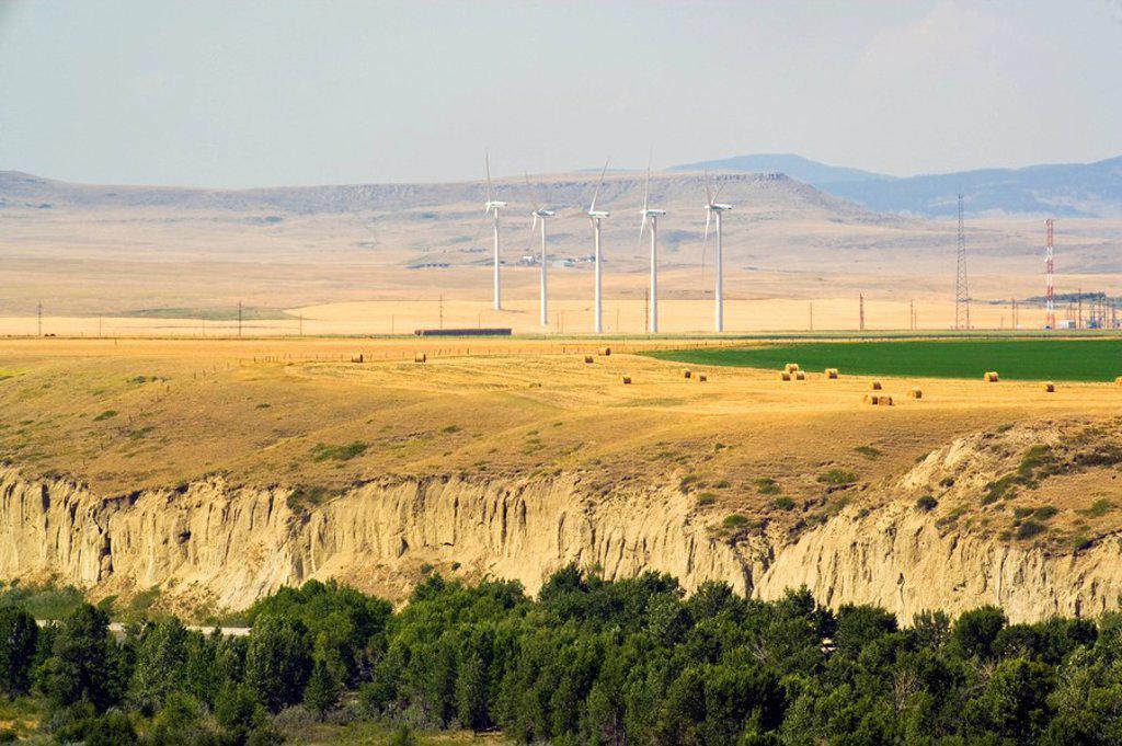 Wind turbines, Pincher Creek, Alberta, Canada : Stock Photo