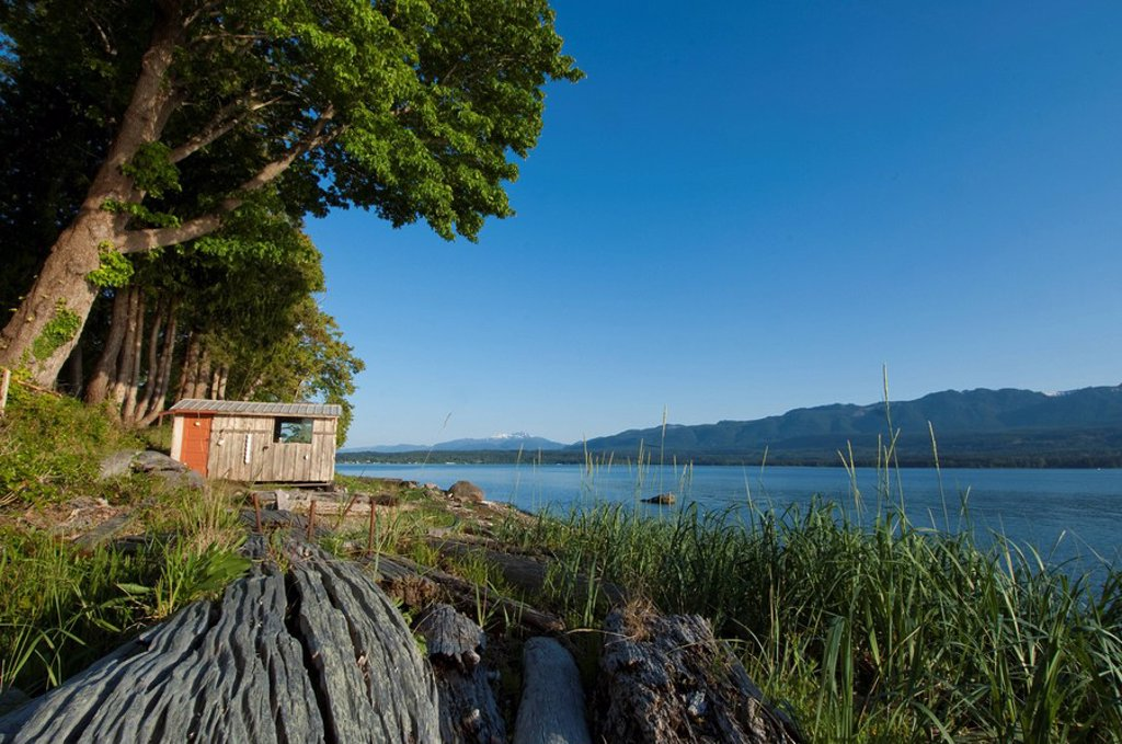 Denman Island shoreline in Baynes Sound, Vancouver Island, BC, Canada : Stock Photo