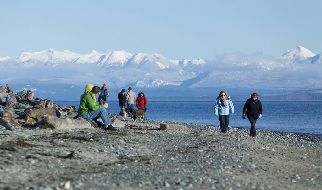 The Goose Spit Regional Park in Comox receives a steady flow of people walking and enjoying the shoreline´s beautiful scenery. Comox, The Comox Valley, Vancouver Island, British Columbia, Canada. : Stock Photo