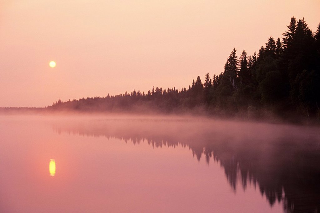 Stock Photo: 1990-2180 Sunrise and mist over Duck Mountain Provincial Park, Manitoba, Canada