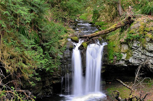 Waterfall at Stocking Creek Park in Saltair, BC. : Stock Photo