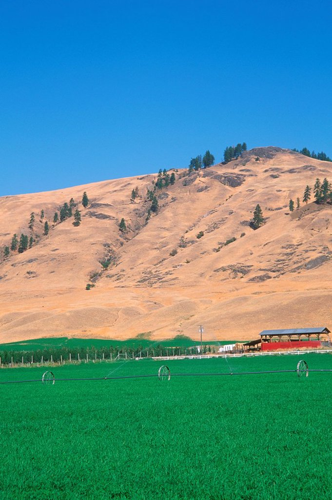 Farmland at Midway, Kettle River valley, British Columbia, Canada : Stock Photo