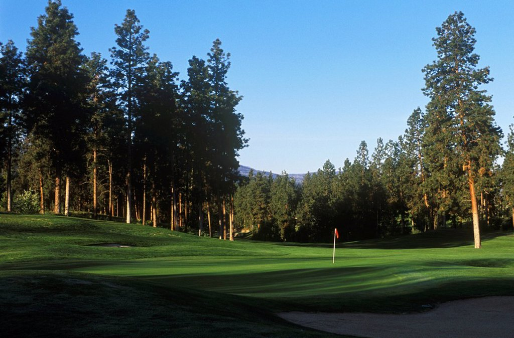 Galllaghers Canyon Golf Course , Kelowna, British Columbia, Canada : Stock Photo