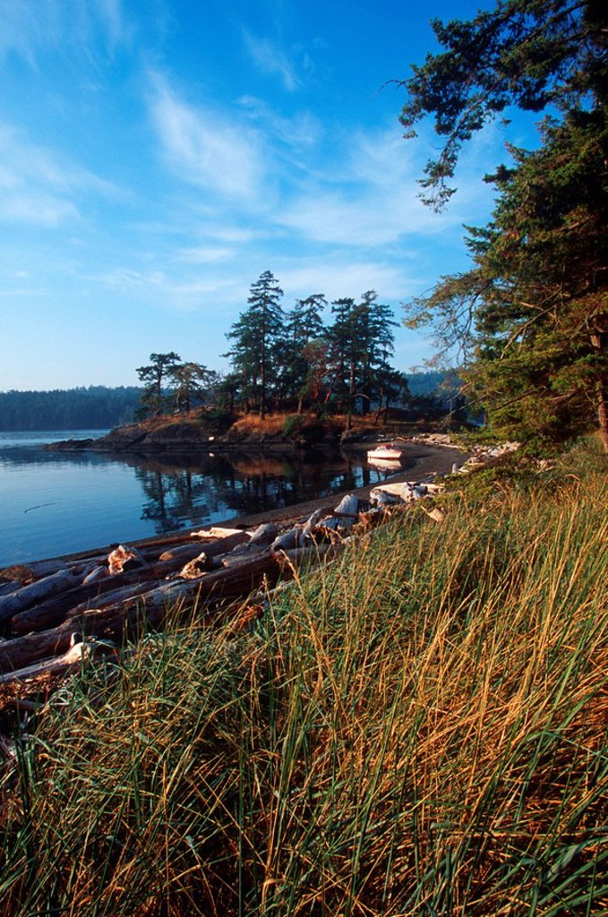 Pender Island, Beaumont Park, Gulf Islands National Park, British Columbia, Canada : Stock Photo