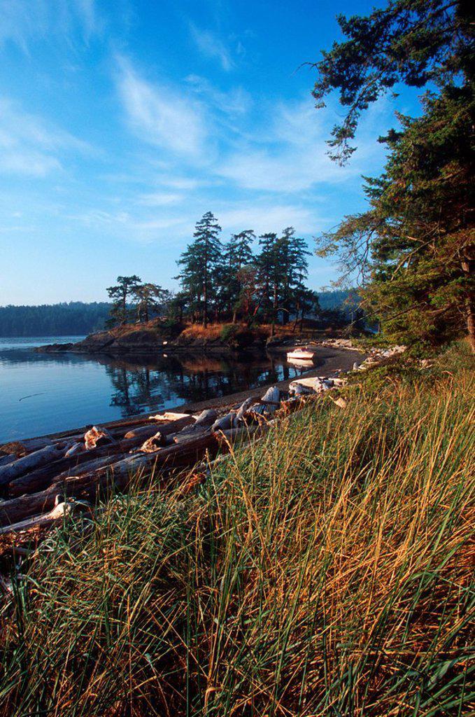 Stock Photo: 1990-23153 Pender Island, Beaumont Park, Gulf Islands National Park, British Columbia, Canada
