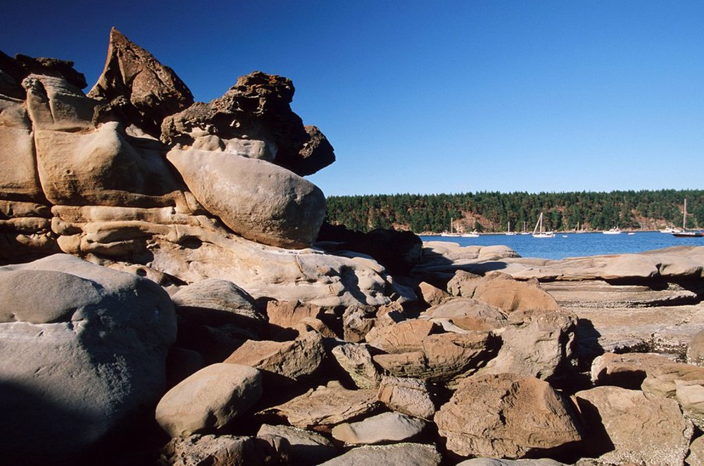 Stock Photo: 1990-23326 Hornby Island in Gulf Islands, sandstone seashore with erosion patterns, Tribune Bay, Vancouver Island, British Columbia, Canada