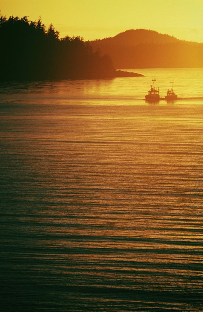 2 tugboats at sunset, Central Coast along Inside Passage, British Columbia, Canada : Stock Photo