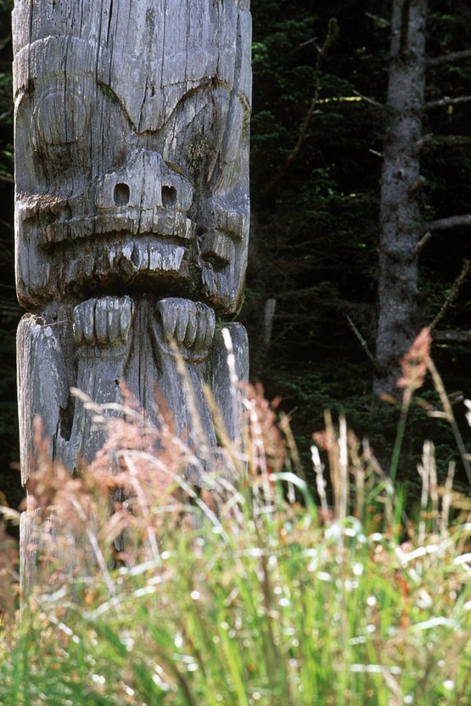 Stock Photo: 1990-24044 Queen Charlotte Islands, Ninstints Village Nad Sdins, Anthony Island SGaang Gwaay, weathered mortuary totem poles, British Columbia, Canada