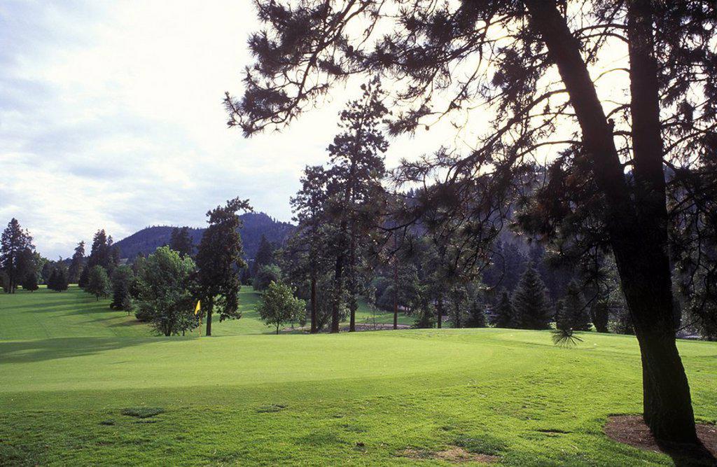 Okanagan, Kelowna, golf course fairway, British Columbia, Canada : Stock Photo