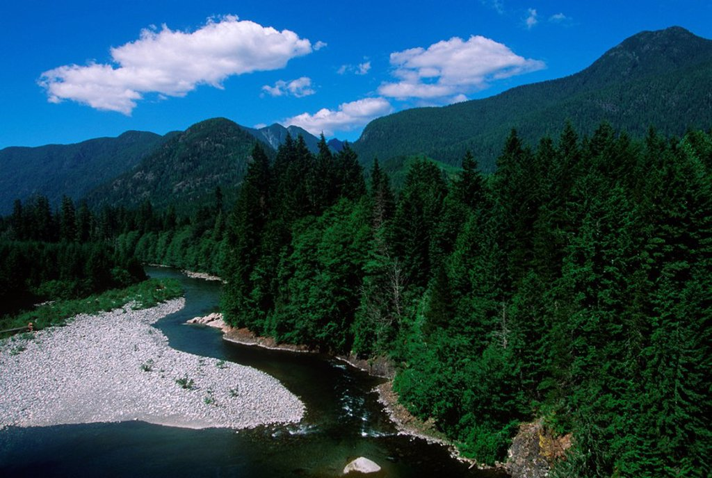 Nimpkish River, Vancouver Island, British Columbia, Canada : Stock Photo