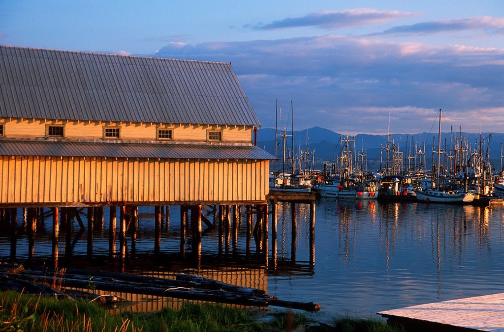 Malcolm Island, Sointula - fishboats at wharf and shed, British Columbia, Canada : Stock Photo