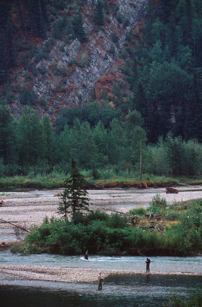 Stock Photo: 1990-24848 BC Rockies near Fernie, Elk River fishing, British Columbia, Canada