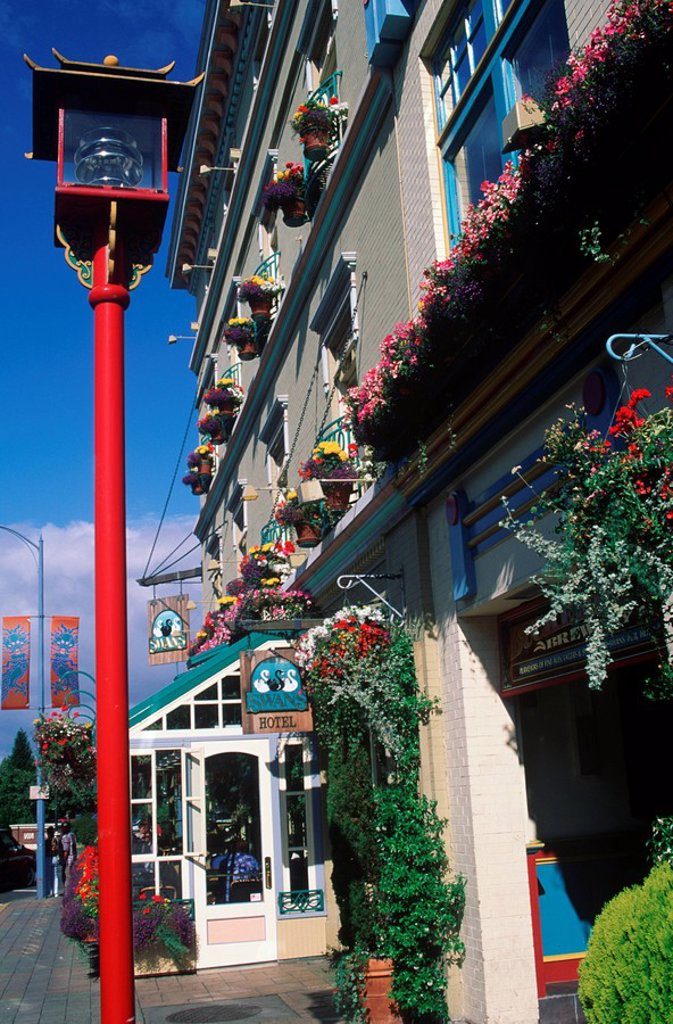 Stock Photo: 1990-25065 Lamp post outside of Swans brew pub and hotel, Victoria, Vancouver Island, British Columbia, Canada