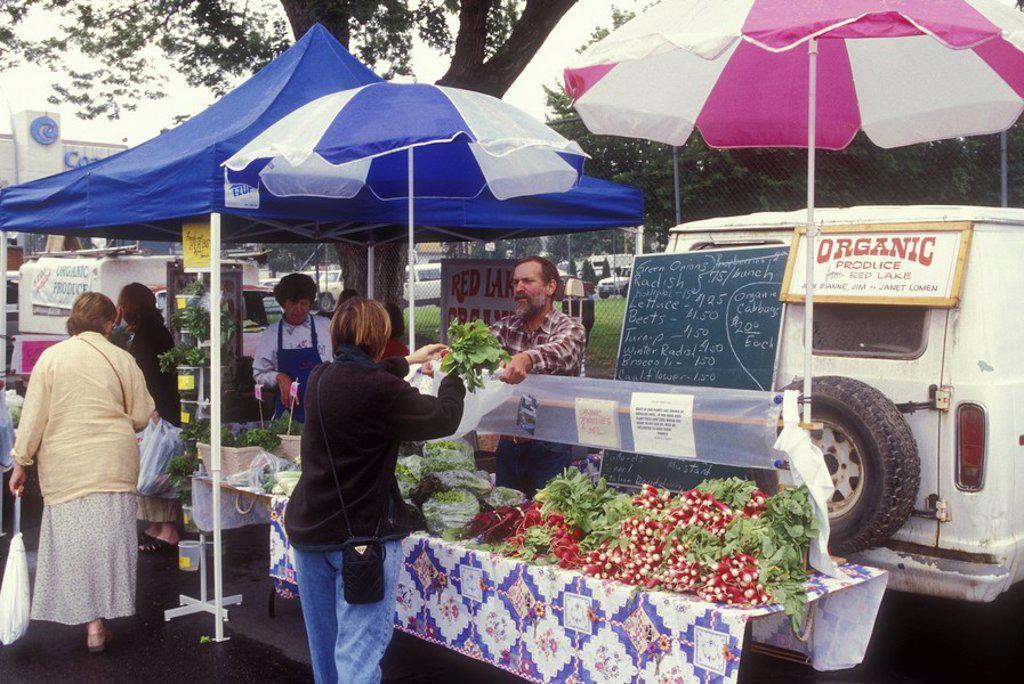 Stock Photo: 1990-25729 Hornby Island, Organic Produce Stand, British Columbia, Canada