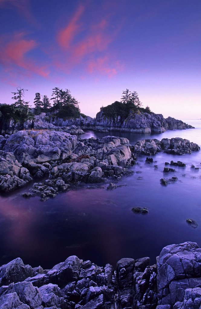 Clayoquot Sound´s Flores Island at sunset, west coast of Vancouver Island, British Columbia, Canada : Stock Photo