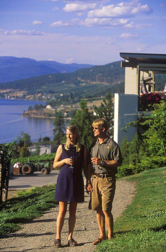 Couple walking in vineyards at Gray Monk Winery, Okanagan Centre, British Columbia, Canada : Stock Photo