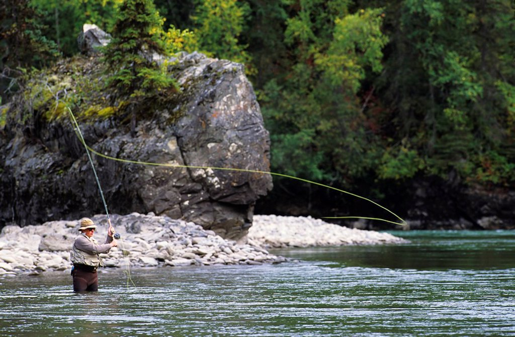 Flyfisherman casting for steelhead, Bulkley river, Smithers, British Columbia, Canada : Stock Photo
