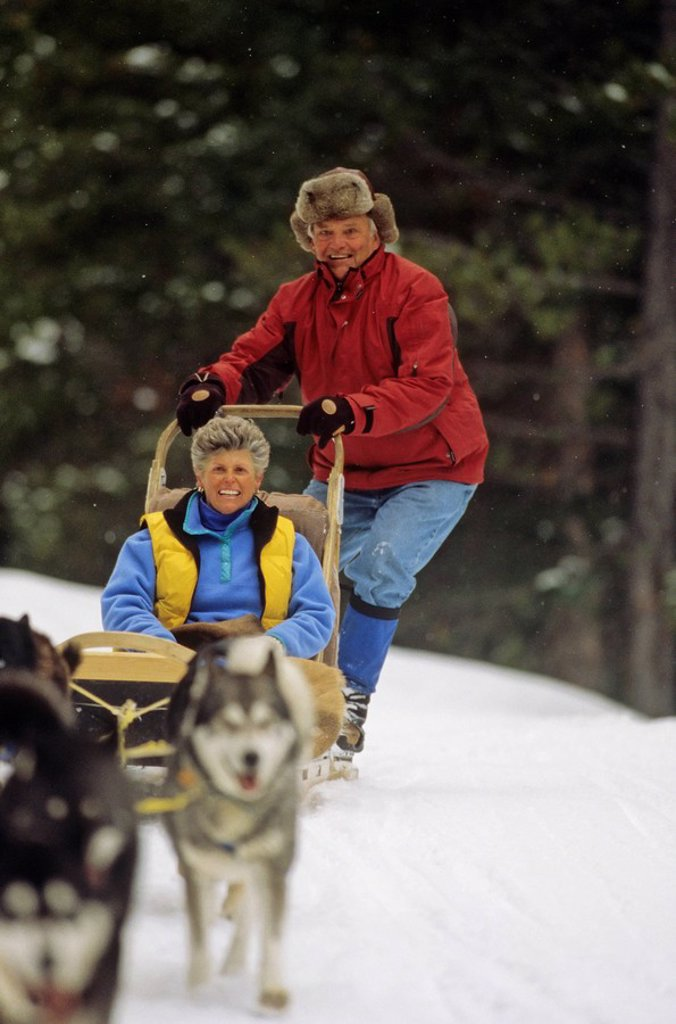 Senior couple on dog sled, Whistler area, British Columbia, Canada : Stock Photo