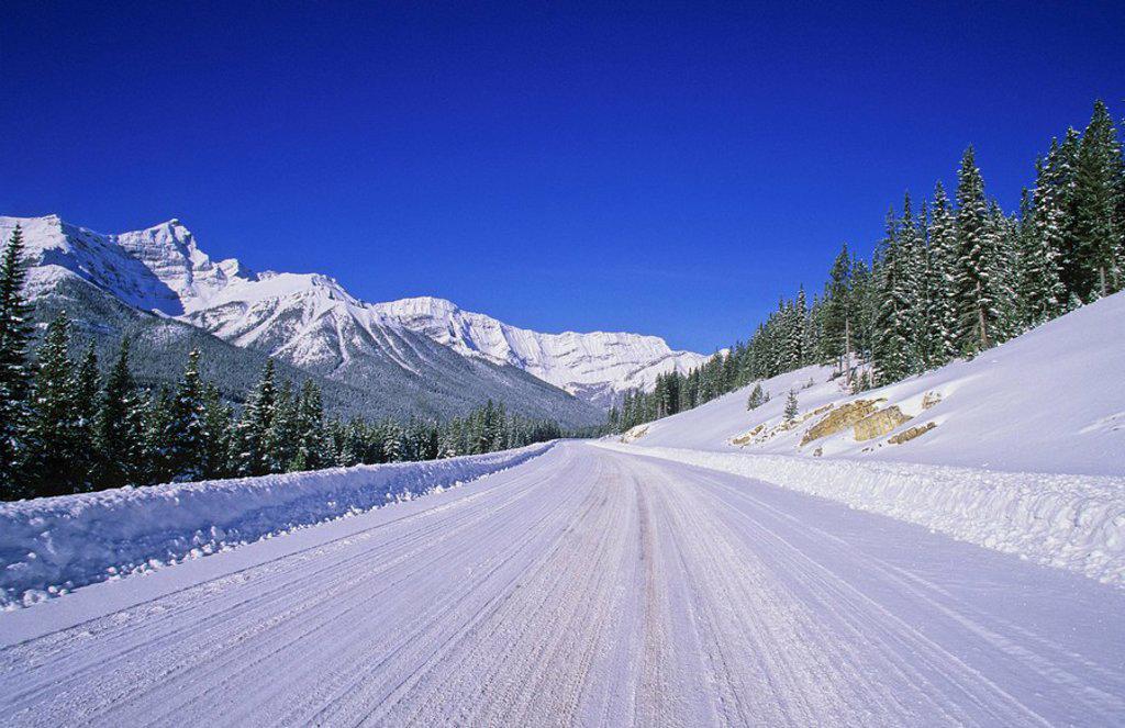 Spray Lakes Road, Kananaskis Country, Alberta, Canada : Stock Photo
