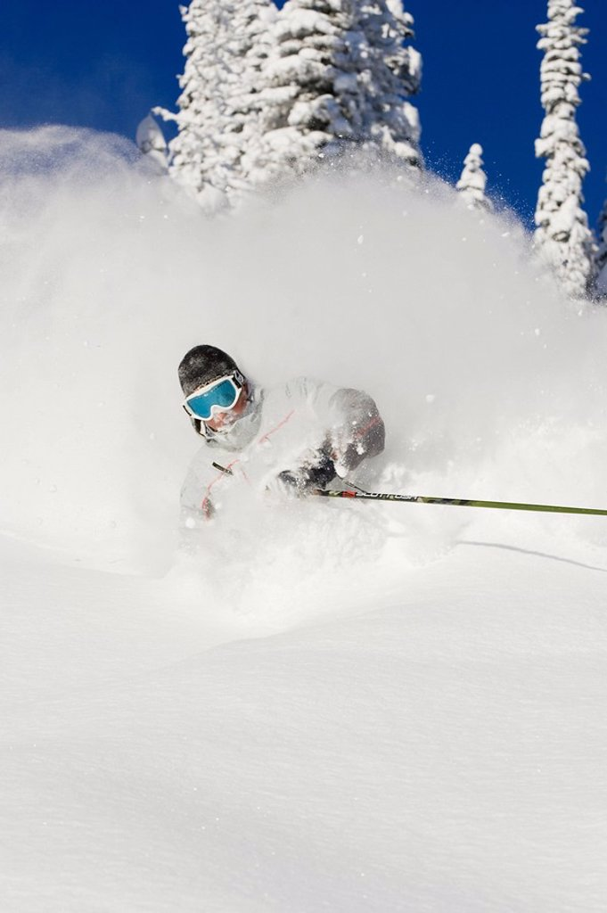 Young man skiing deep powder at Fernie Alpine Resort, Fernie, British Columbia, Canada : Stock Photo
