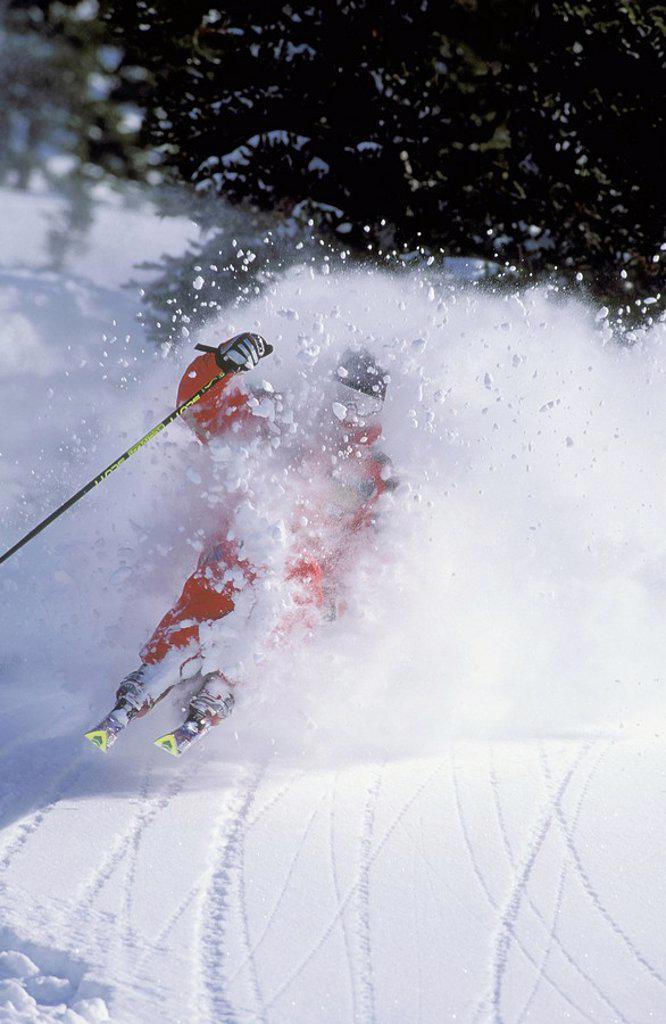 Stock Photo: 1990-27632 Skier on Whistler Mountain, British Columbia, Canada