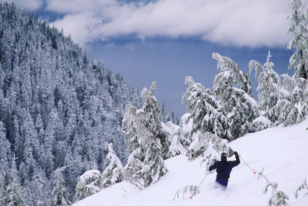Man skiing Top Gun at Cypress Bowl, West Vancouver, British Columbia, Canada : Stock Photo