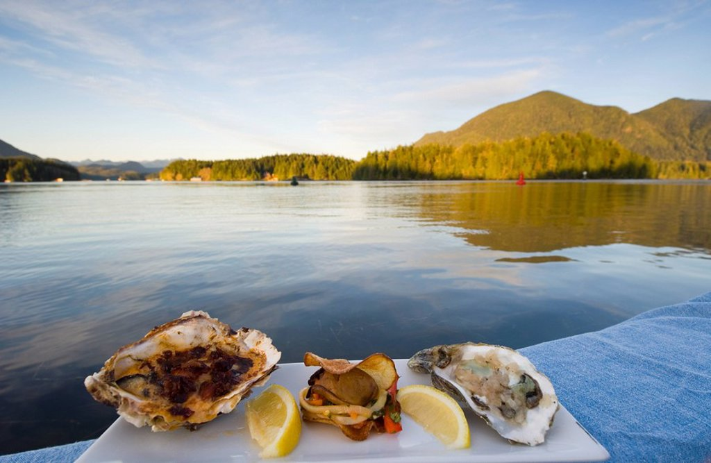 Gourmet oyster plate displayed at Tofino waterfront, Vancouver Island, British Columbia, Canada : Stock Photo