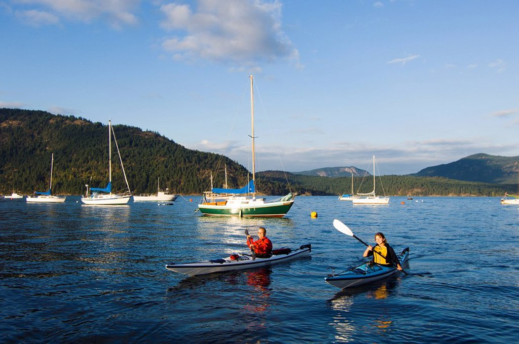 kayakers paddle in front of village, Cowichan Bay, Vancouver Island, British Columbia, Canada : Stock Photo