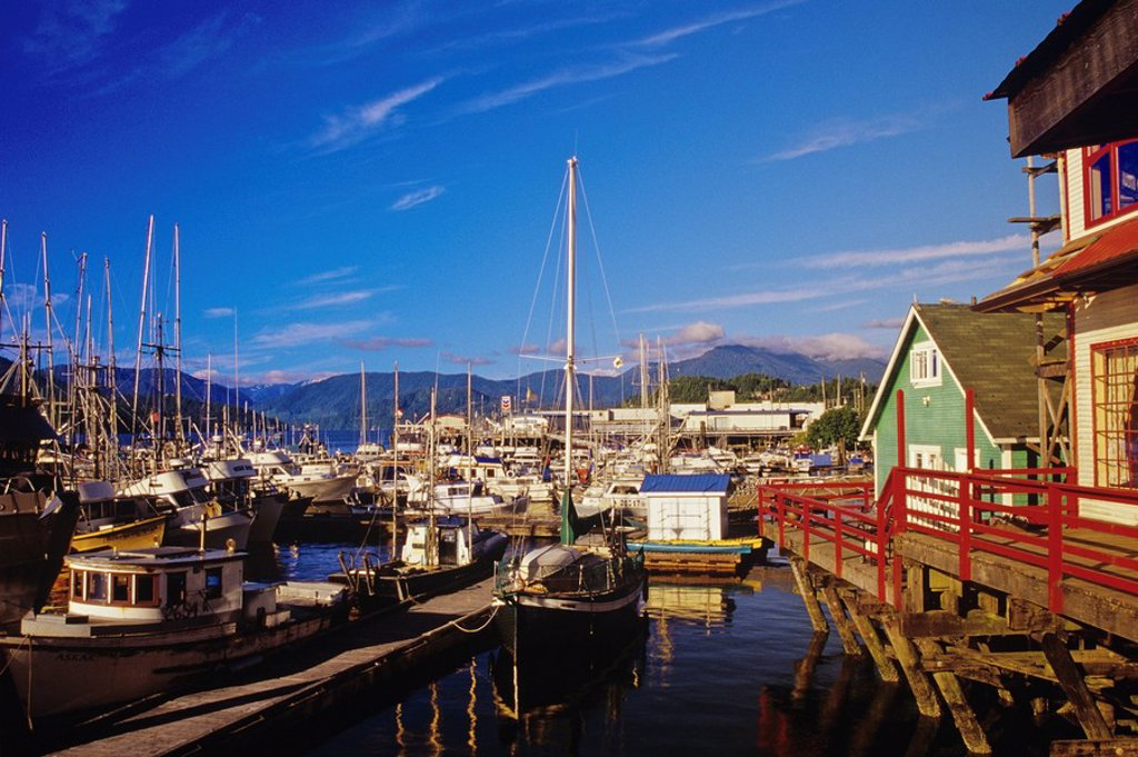 Stock Photo: 1990-28781 Marina at Prince Rupert, British Columbia, Canada