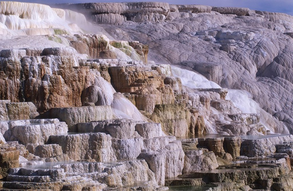 USA, Yellowstone National Park, Canary Springs at Mammoth : Stock Photo