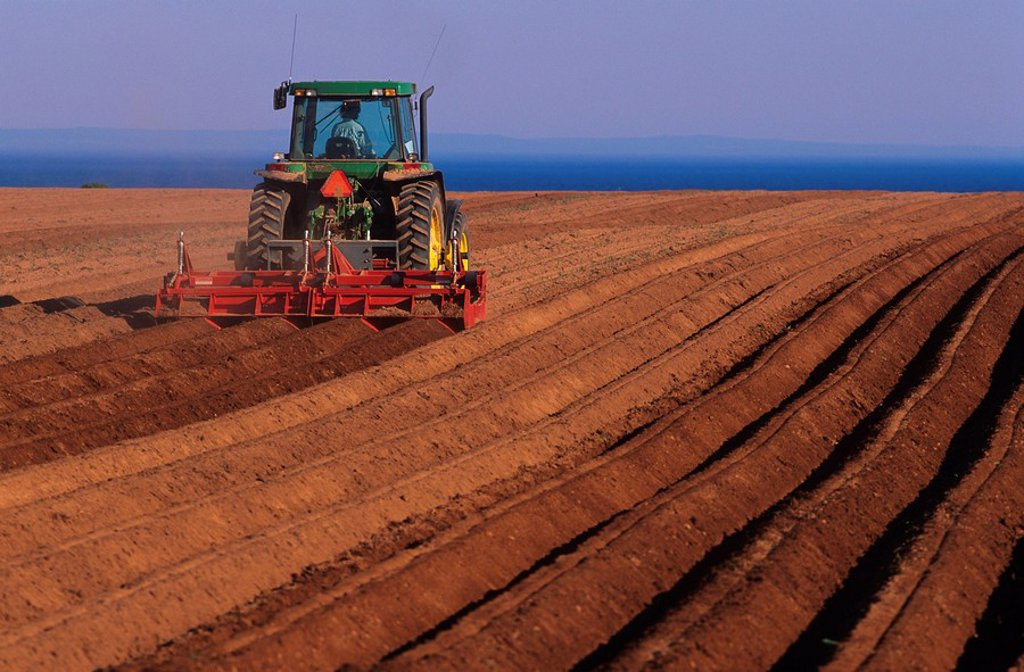 Stock Photo: 1990-3066 Ploughing fields in Guernsey Cove, Prince Edward Island, Canada
