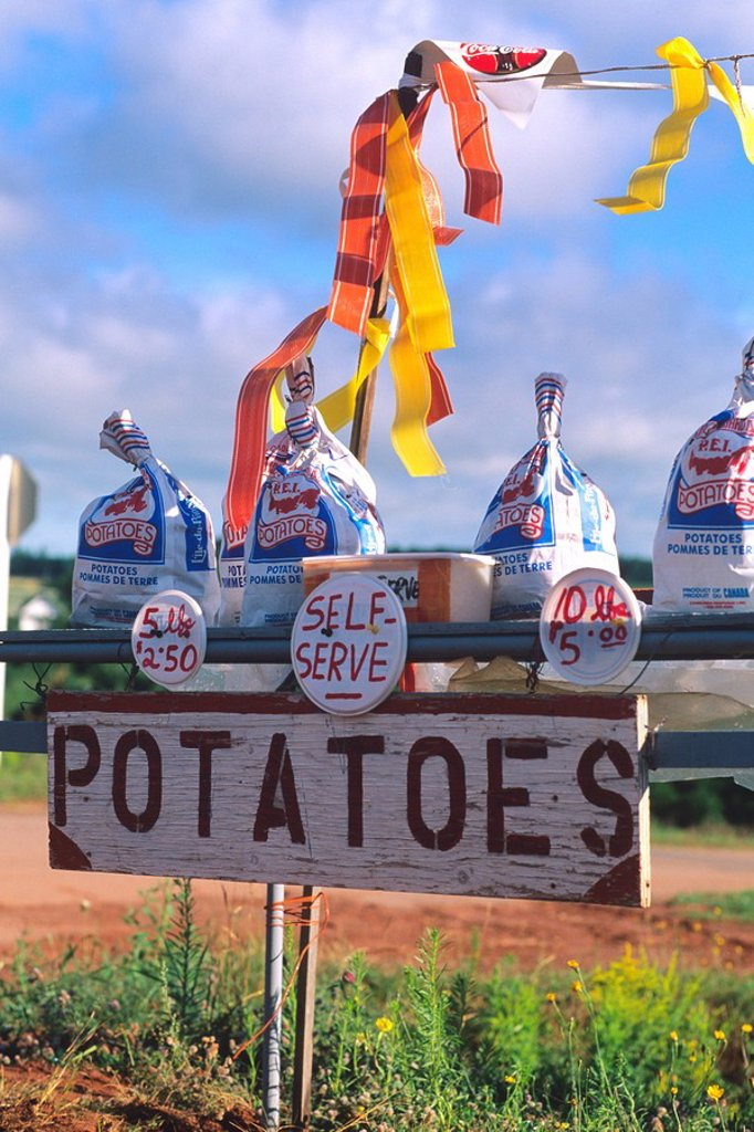 Potato Stand, tryon, Prince Edward Island, Canada : Stock Photo