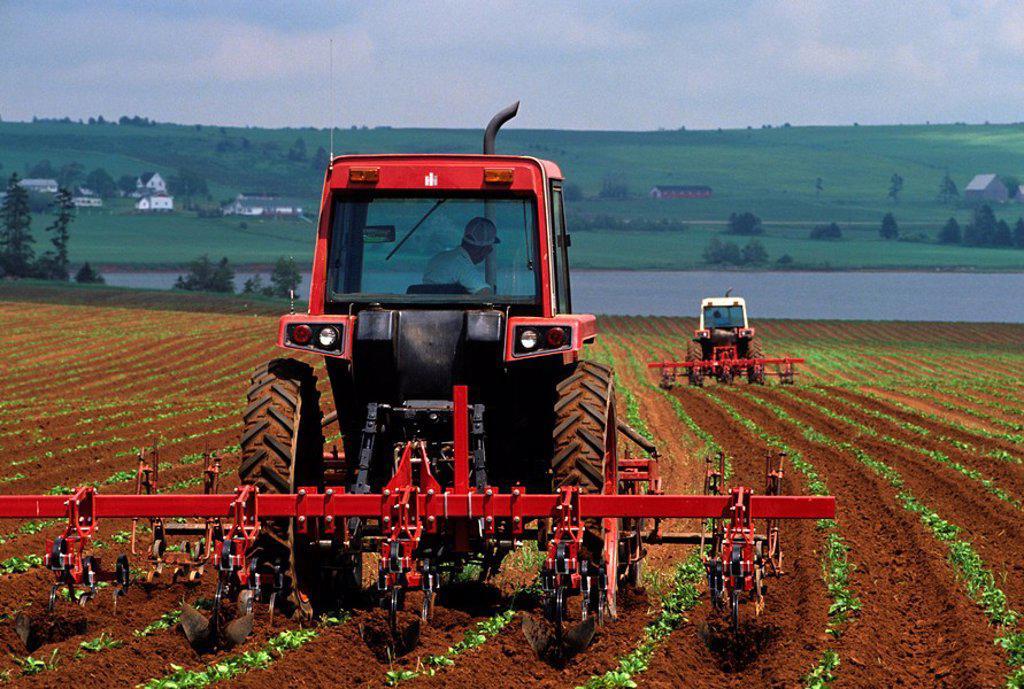 Stock Photo: 1990-3116 Harrowing potato field, Prince Edward Island, Canada
