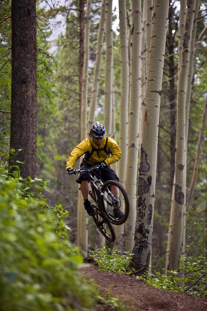 A mountain biker rides the highline trail in Canmore, AB : Stock Photo