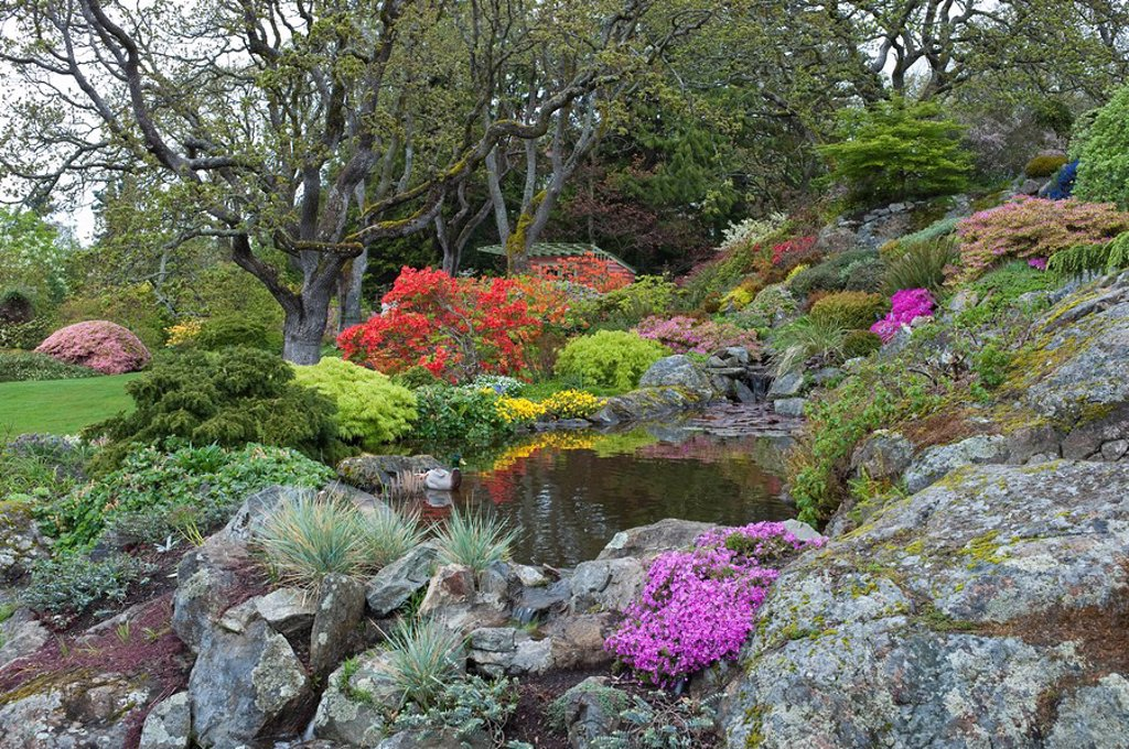 Stock Photo: 1990-36398 Abkhazi Garden in spring time, Victoria, British Columbia, Canada