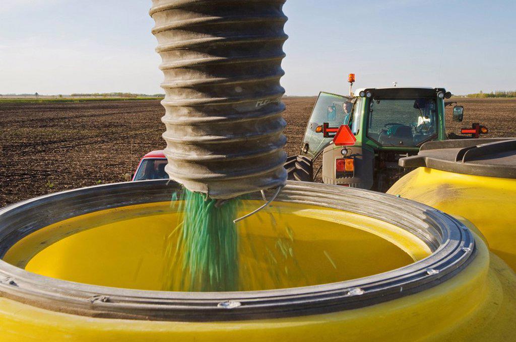 farmer loading a seeding tank with soybean seed near Lorette, Manitoba, Canada : Stock Photo