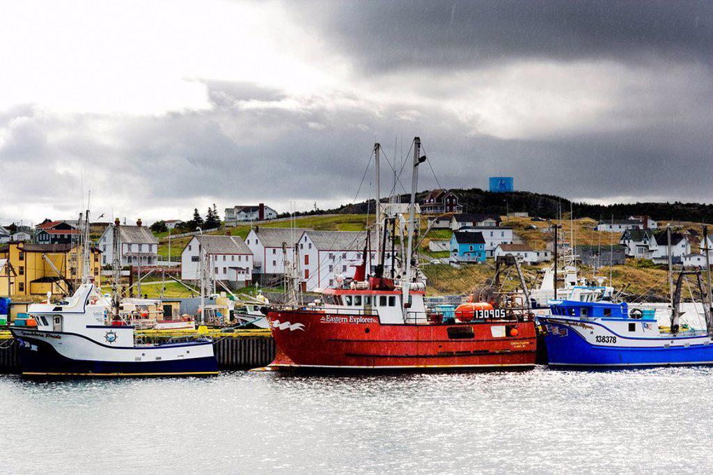 Fishing boats tied up to wharf in the rain, Bonavista, Newfoundland and Labrador, Canada. : Stock Photo