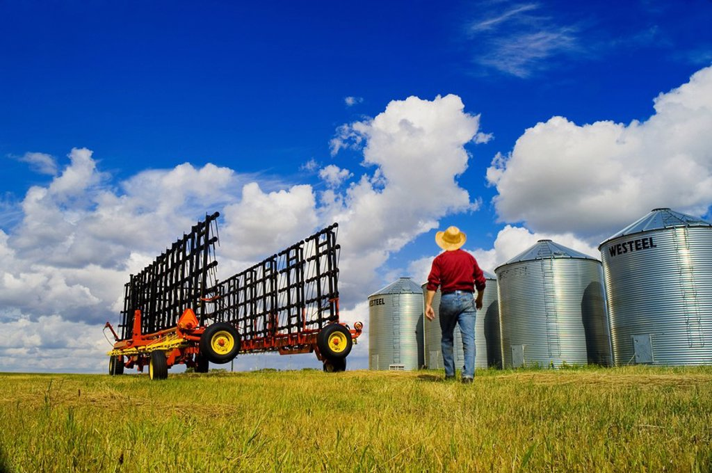 a man lwalks towards harrowing equipment next to grain storage bins, near Carey, Manitoba ,Canada : Stock Photo