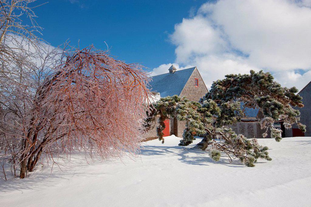Silver thaw, Barn at Green Gables National Historic Site, Prince Edward Island National Park, Cavendish, Prince Edward Island, Canada. : Stock Photo