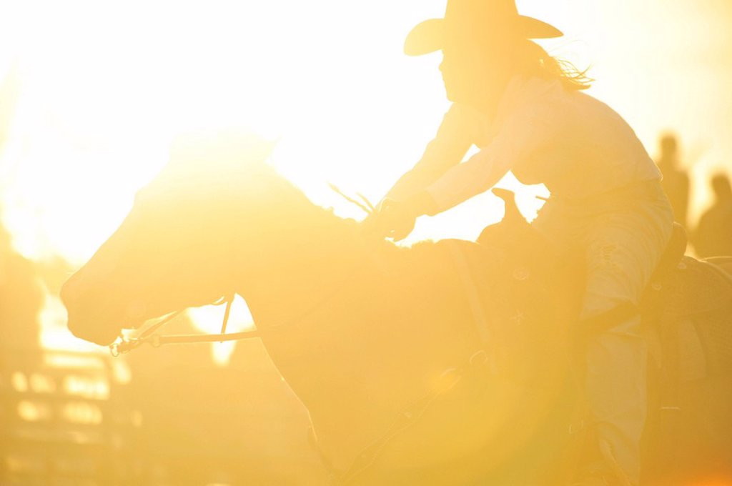 A silhouette of a rodeo rider competing in a barrel racing event under backlit sunny arena conditions. : Stock Photo