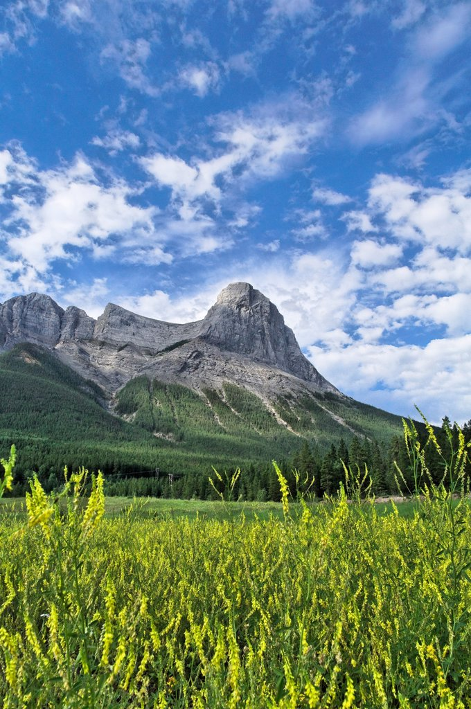 Ha Ling Peak, Mount Lawrence Grassi, Canmore, Alberta, Canada : Stock Photo
