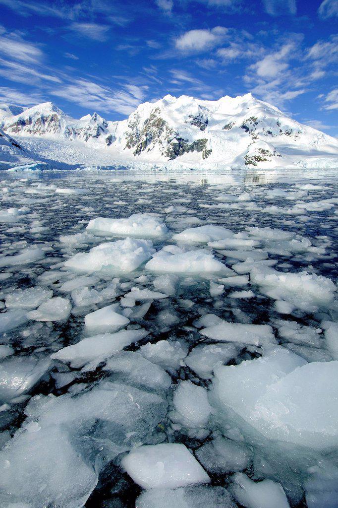 Paradise Bay, Antarctic Peninsula, Antarctica : Stock Photo