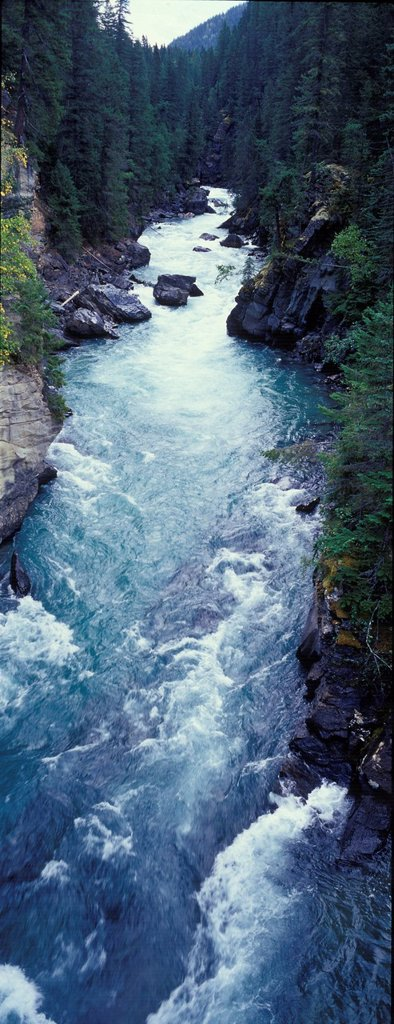 Fraser River canyon in Mount Robson Provincial Park, Rocky Mountains, British Columbia, Canada : Stock Photo