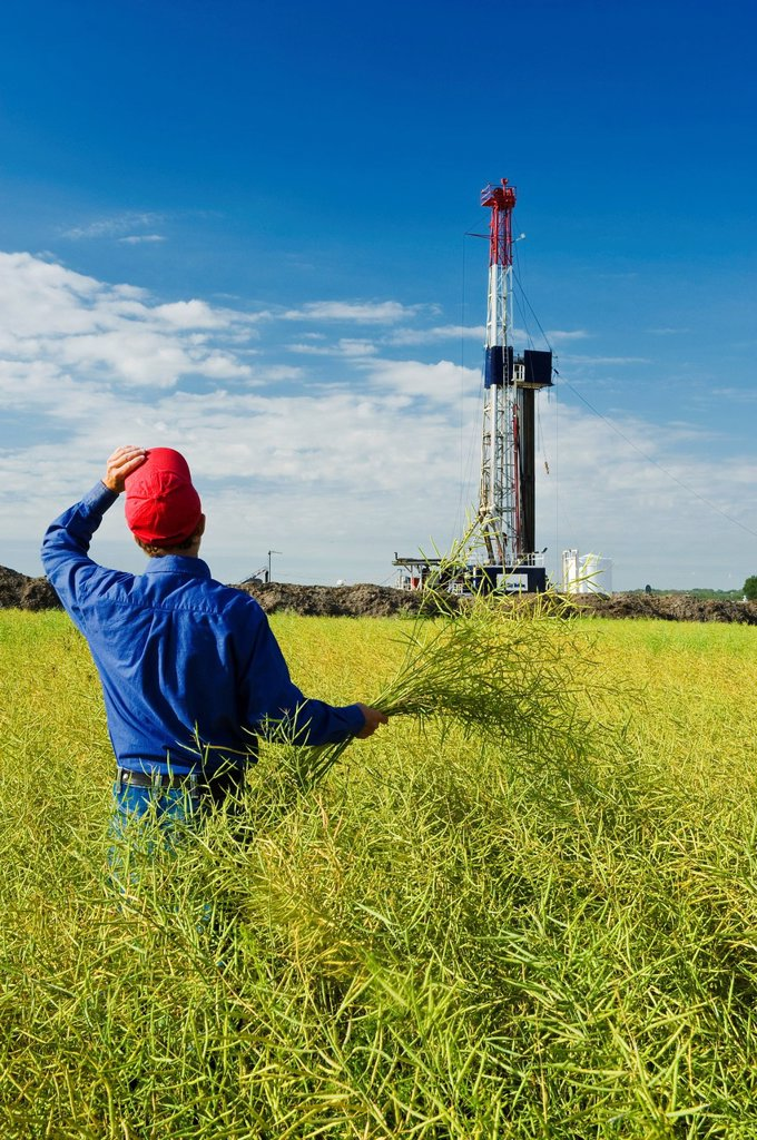 Stock Photo: 1990-47682 A man looks out over a field of pod stage canola with an oil drilling rig in the background, near Sinclair, Manitoba, Canada