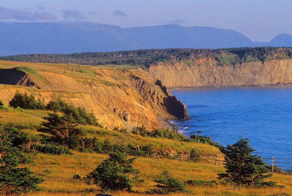 Stock Photo: 1990-4769 Codroy, Newfoundland, Canada