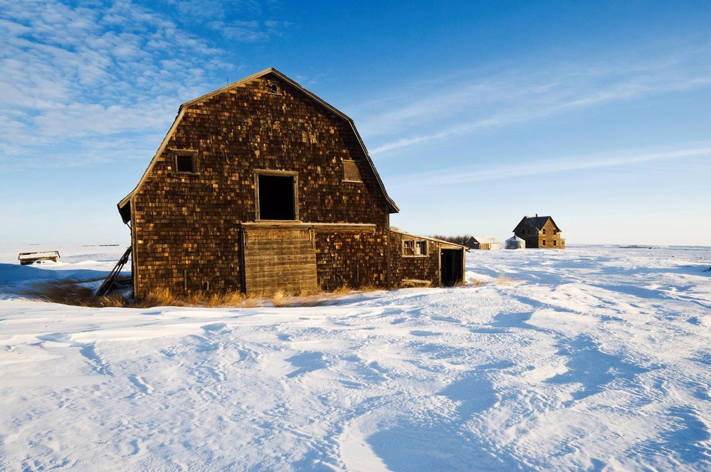 Abandoned farm, near Assiniboia, Saskatchewan, Canada : Stock Photo