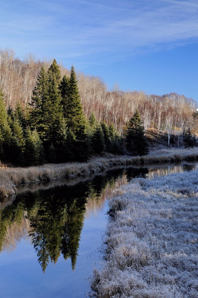 Junction Creek with frosted shoreline grasses, Lively, Greater Sudbury, Ontario, Canada : Stock Photo