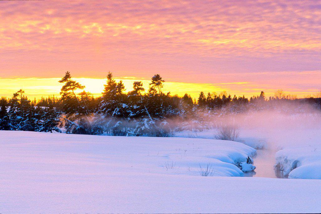 Brook in winter at sunset, Harrington, Prince Edward Island, Canada : Stock Photo